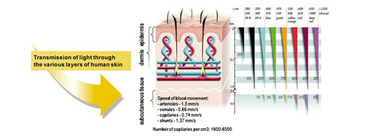 BIOPTRON Light has biostimulative effects: when applied to the skin it stimulates light-sensitive intracellular structures and molecules